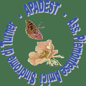 13 apadest Turner